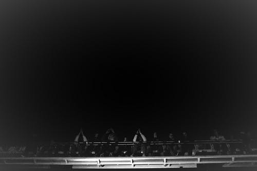 Free stock photo of black and-white, happy people, joy, monochrome photography