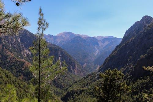 Ảnh lưu trữ miễn phí về bức tranh toàn cảnh, cây, công viên quốc gia, creta
