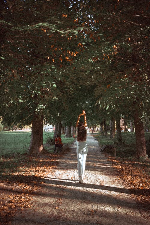 Woman Standing On A Pathway Between Trees