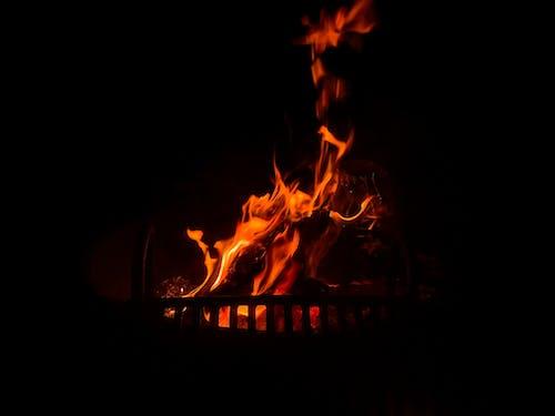 オレンジ, キャンプファイヤー, ホット, 火の無料の写真素材