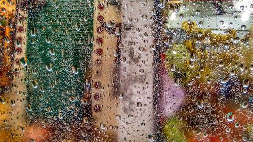 Foto profissional grátis de água, borrão, gota, gota de chuva