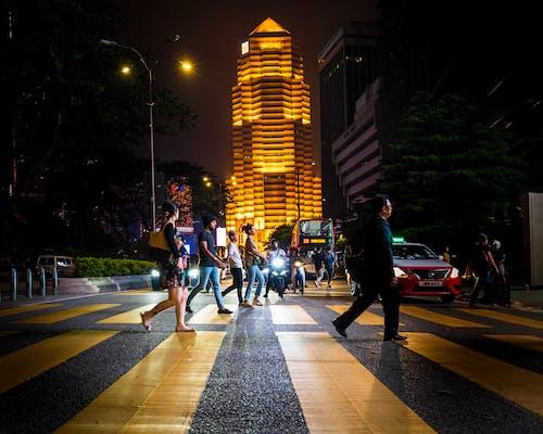 Free stock photo of zebra crossing