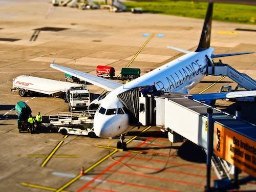 Foto d'estoc gratuïta de aeròdrom, aerolínia, aeroport, airside