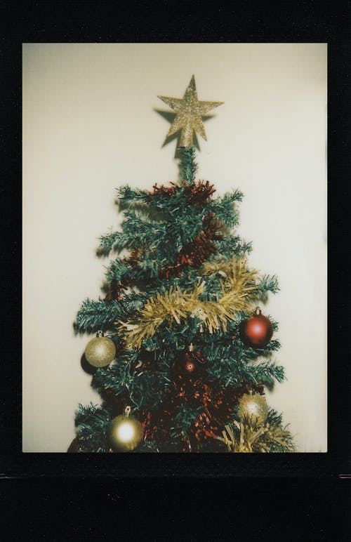 Photo Of Christmas Tree