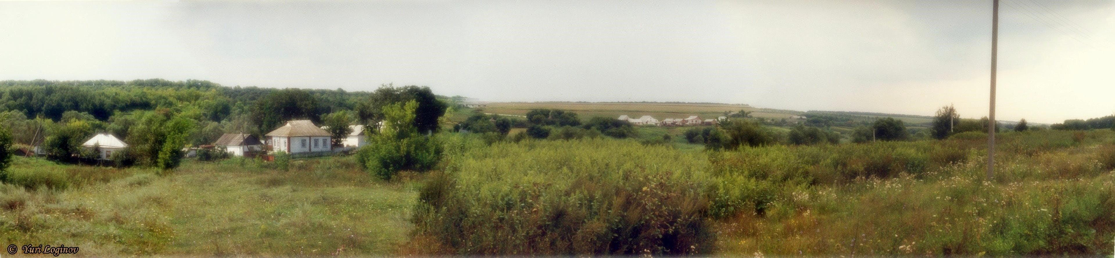 Free stock photo of ukraine, Pishchanka, Dvorichna Raion, Kharkiv Oblast