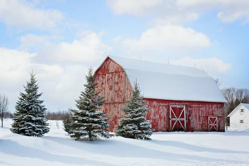 Red Barn Near Pine Trees Under Cloudy Sky