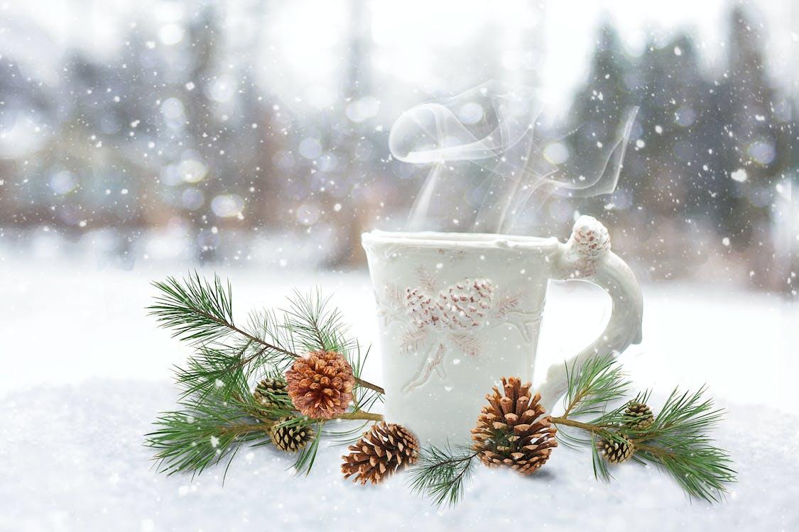 White Ceramic Mug Near Brown Pinecones
