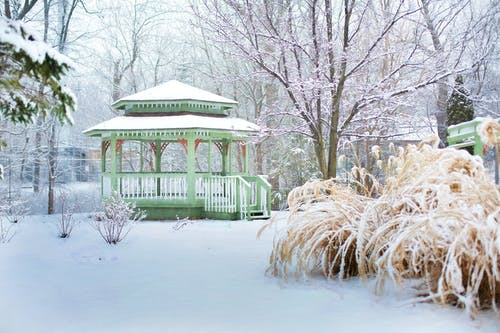 Free stock photo of background, gazebo, landscape, park