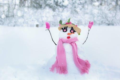 Fotobanka sbezplatnými fotkami na tému nech sneží, ružová, sneh, snehuliak