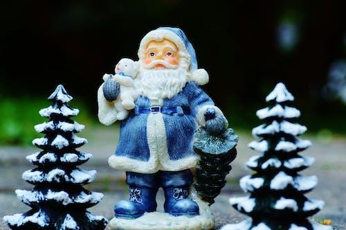 Foto stok gratis adven, ara, dekorasi Natal, Desember