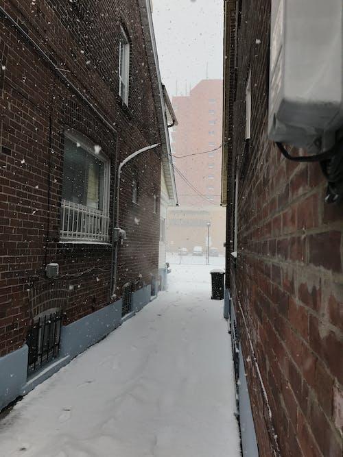 Free stock photo of canada, snow, street