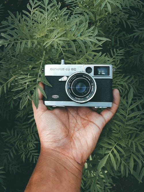 Foto stok gratis antik, fotografi, kamera, kamera lama