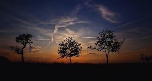 Gratis lagerfoto af himmel, morgengry, natur, silhouet
