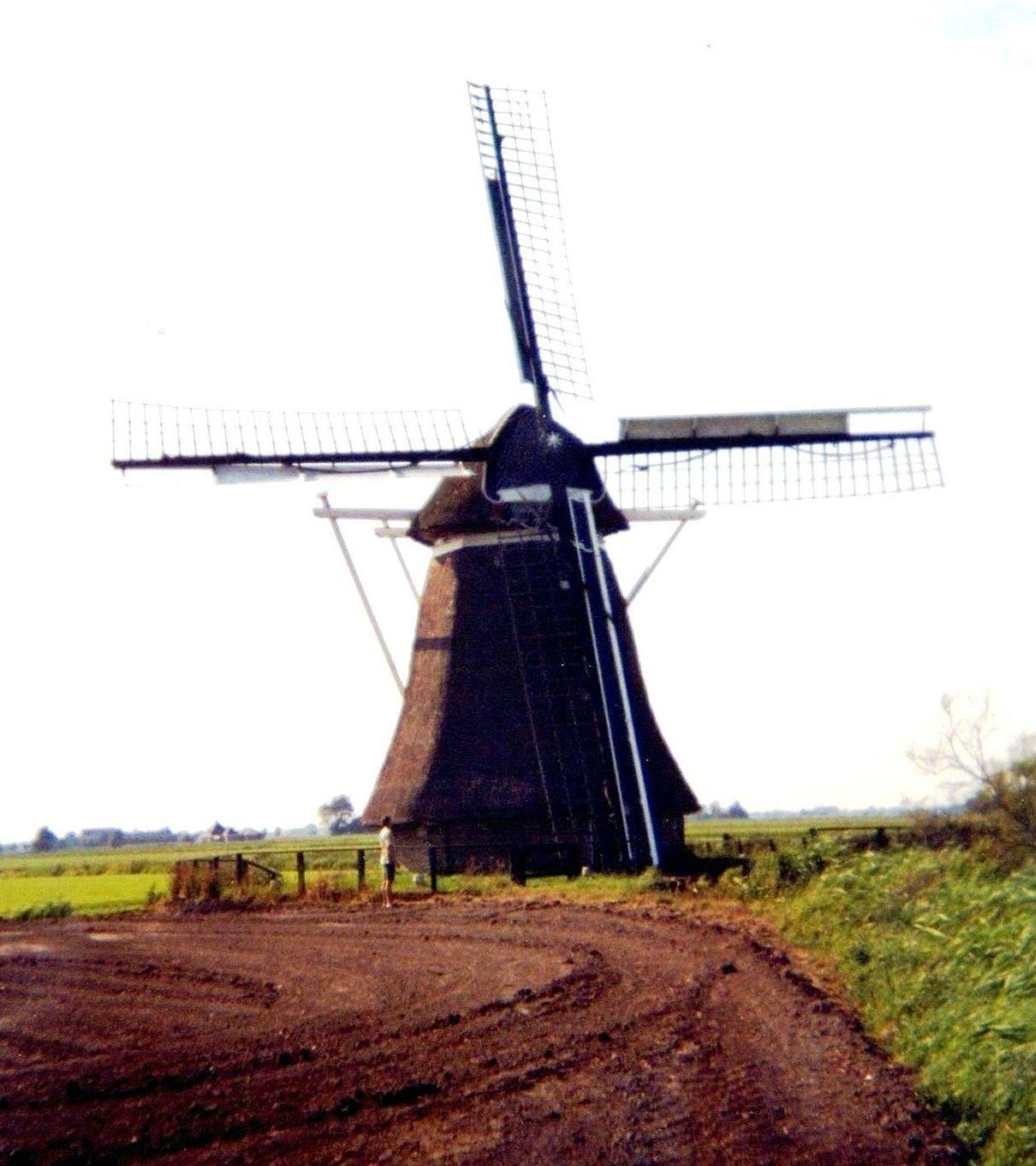 Free stock photo of netherlands, Nederland, friesland, Froskepole