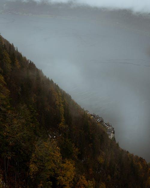 Free stock photo of austria, autumn, clouds, fog