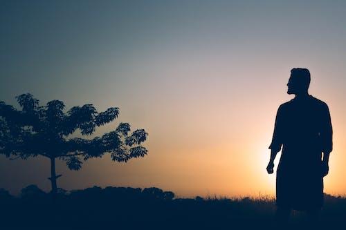Free stock photo of african american boy, alone, beautiful sunset