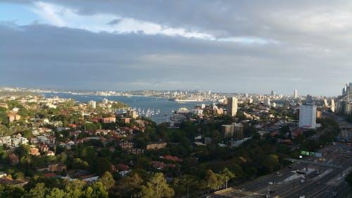 雪梨 的 免費圖庫相片