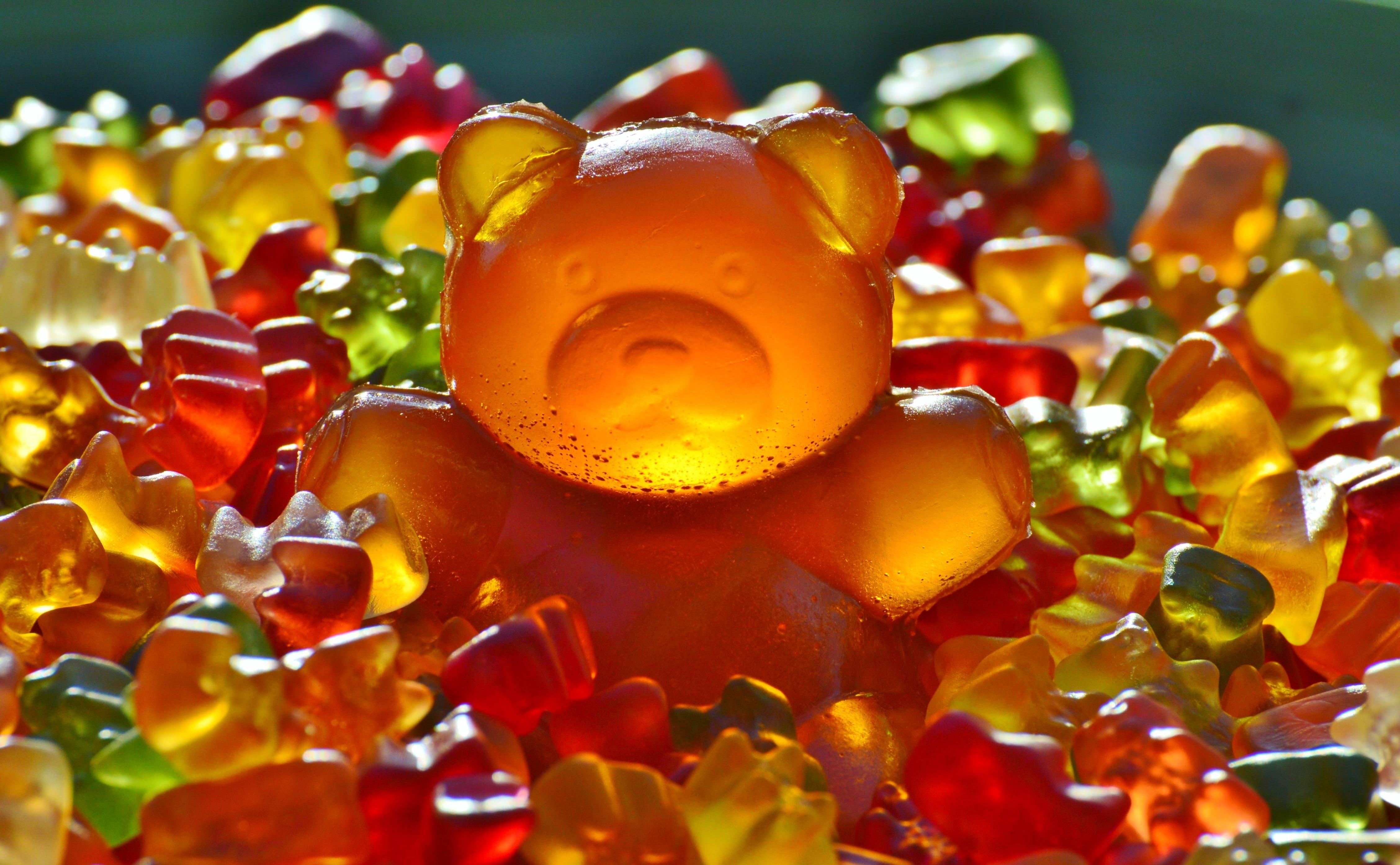 Imagine de stoc gratuită din acadele, colorat, dulciuri, jeleuri cu ursuleți