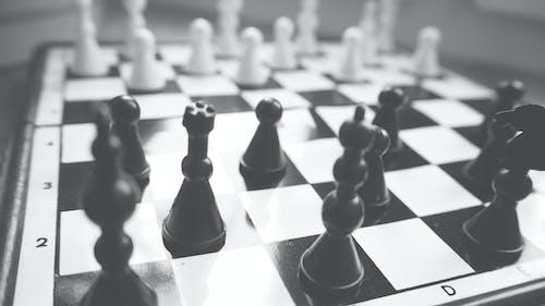 Fotobanka sbezplatnými fotkami na tému čierny abiely, dosková hra, inteligencia, jazdec (šach)