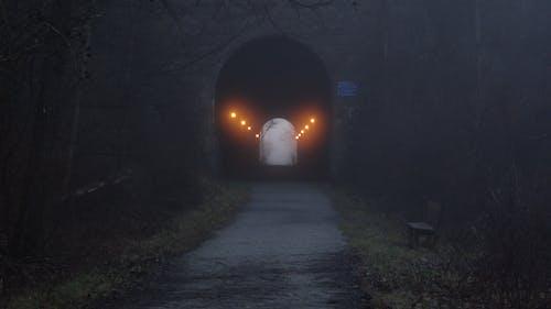 Free stock photo of dark, trail, Train tunnel, tunnel