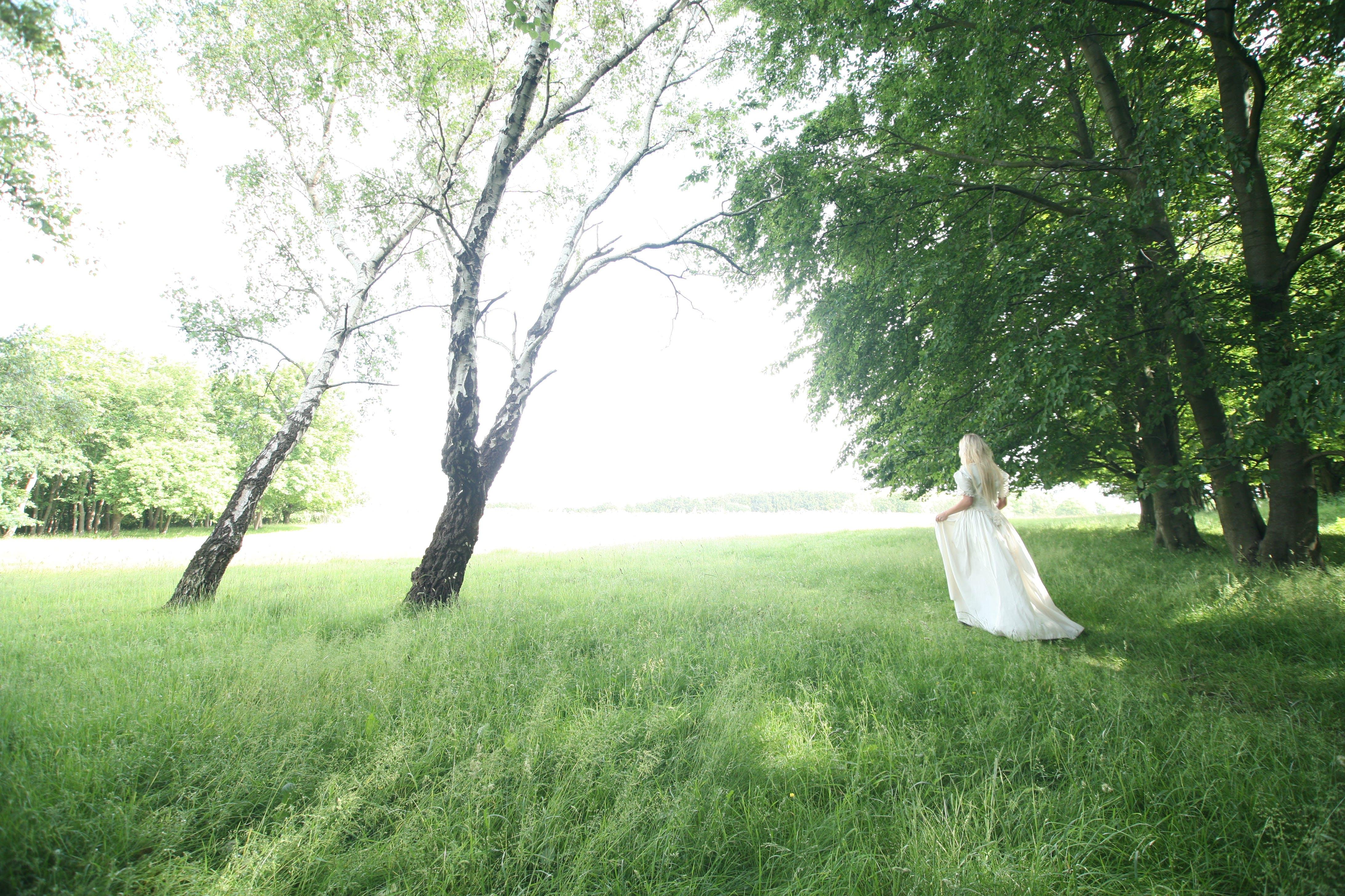 Kostenloses Stock Foto zu landschaft, natur, frau, bäume