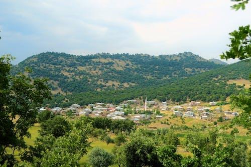 Ingyenes stockfotó ég, erdő, fák, falu témában