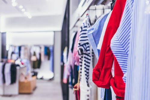 Kostenloses Stock Foto zu boutique, business, drinnen, elegant