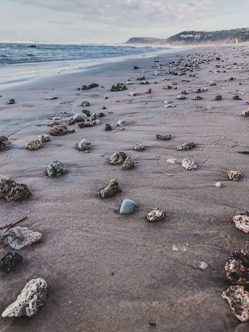 Free stock photo of bahia, beach, rocks