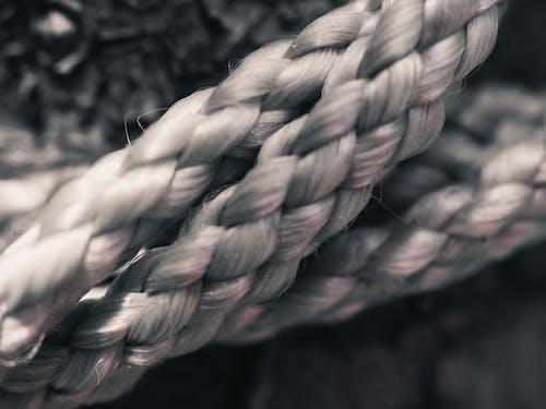 Immagine gratuita di bianco, corda, fibra, macro