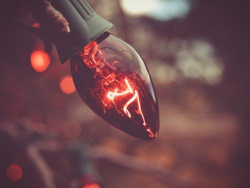 Darmowe zdjęcie z galerii z czerwony, jasny, żarówka, zbliżenie