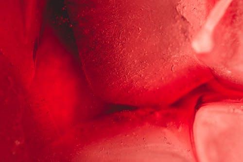 artistik, iddialı, ıslak, kırmızı içeren Ücretsiz stok fotoğraf