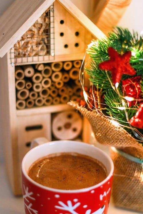 Imagine de stoc gratuită din brad de crăciun, casă de lemn, ciocolată caldă, decorațiune de crăciun