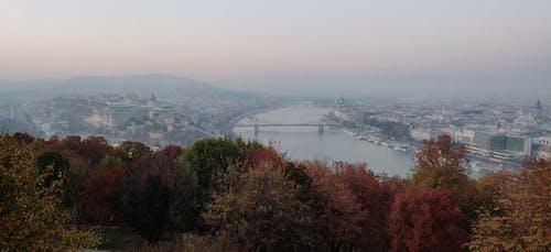 Ảnh lưu trữ miễn phí về Budapest, cầu dây xích, hungary, màu mùa thu