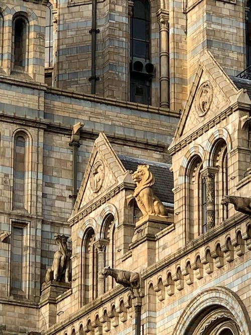 건축, 동상, 사자, 석상의 무료 스톡 사진