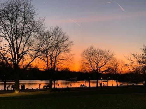 Foto profissional grátis de Inglaterra, Londres, parque hyde, pôr do sol