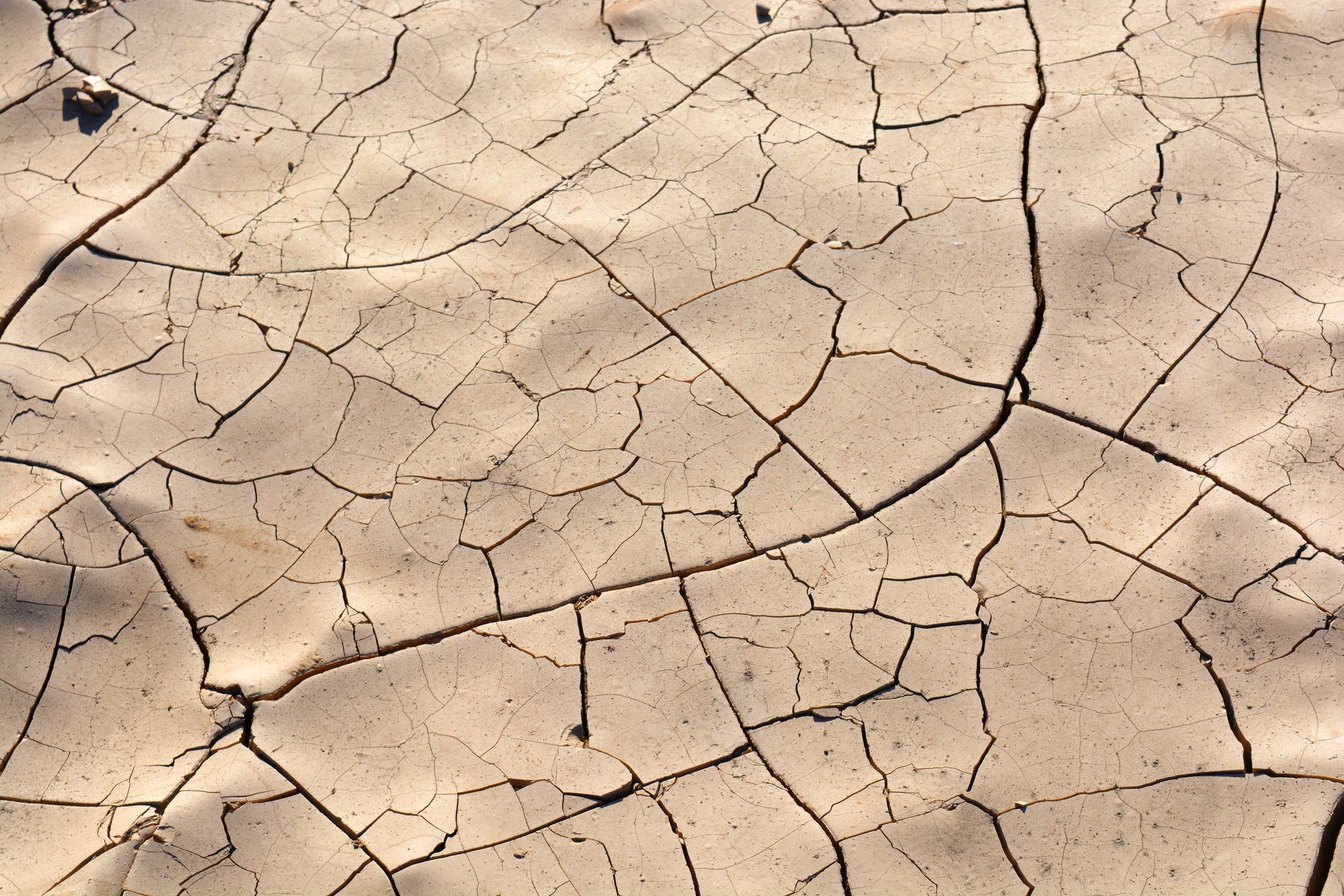 Gavin Newsom Extends Drought State of Emergency in California