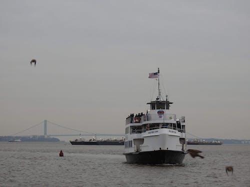 คลังภาพถ่ายฟรี ของ nyc, สะพานบรูคลิน, เรือข้ามฟาก