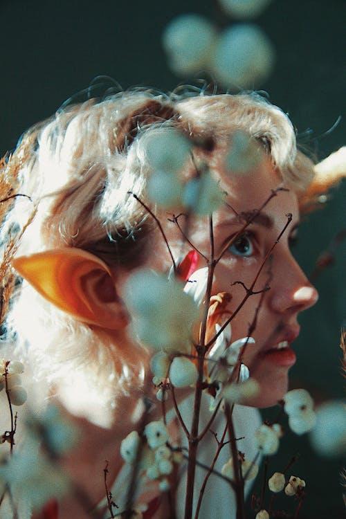 Základová fotografie zdarma na téma elf, fantazie, kostým, krásný