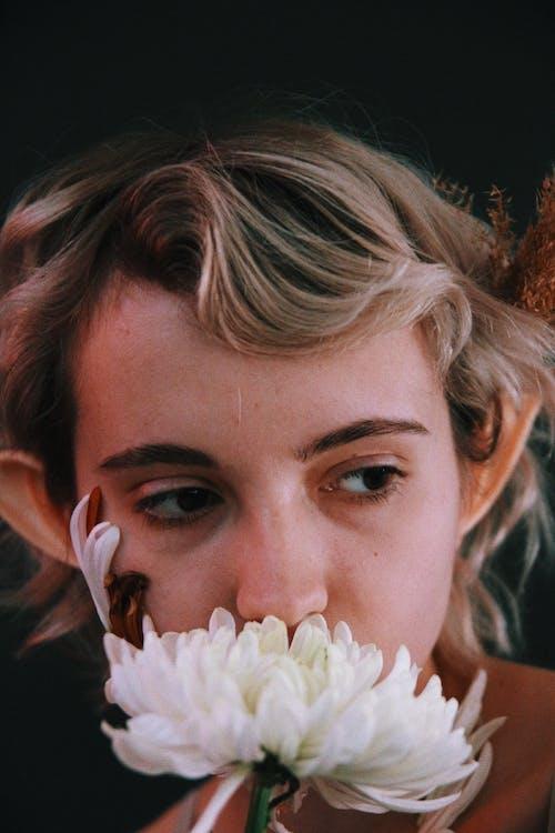 Základová fotografie zdarma na téma bílá květina, denní světlo, detailní záběr, elf