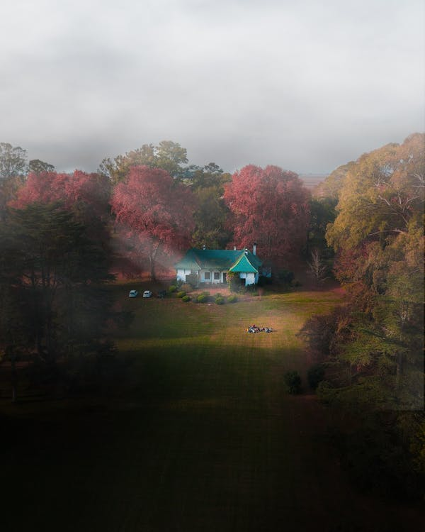 Aerial Photography of Green and White House Near Trees