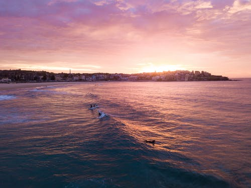 Foto d'estoc gratuïta de capvespre, cel al capvespre, fent surf, taula de surf