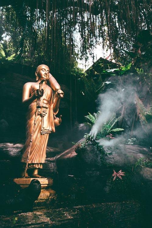 Fotos de stock gratuitas de Arte, artístico, brillante, Buda