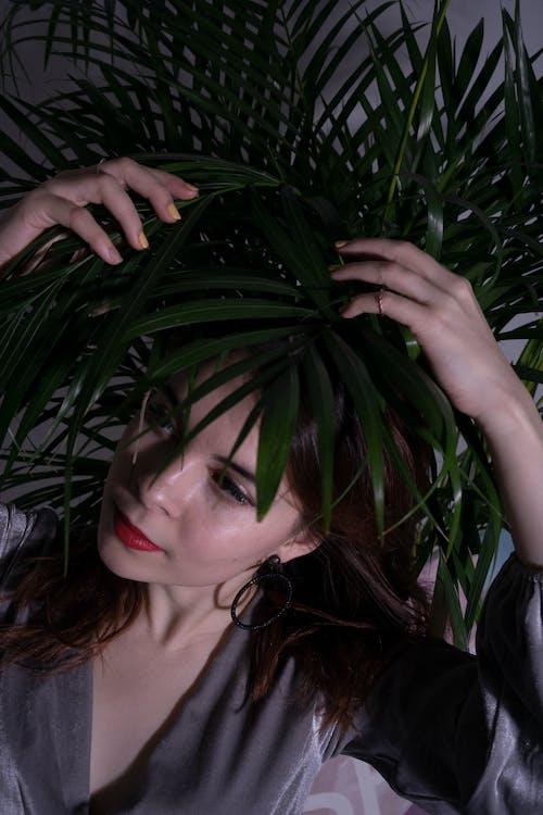 Kostenloses Stock Foto zu blätter, dunkelgrüne pflanzen, festhalten, fotoshooting