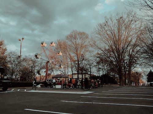 Immagine gratuita di città, natale, parco, sera
