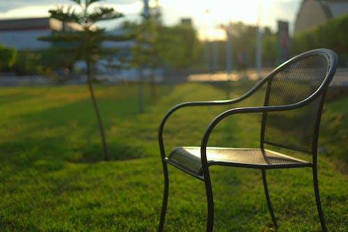 Free stock photo of bokeh, chair, grass, light