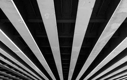 Black and White Photograph of Ceiling