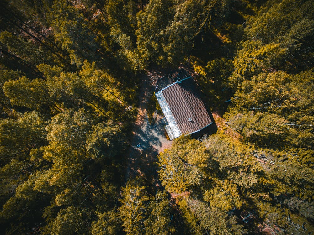 Aerial View of House Surrounded With Trees