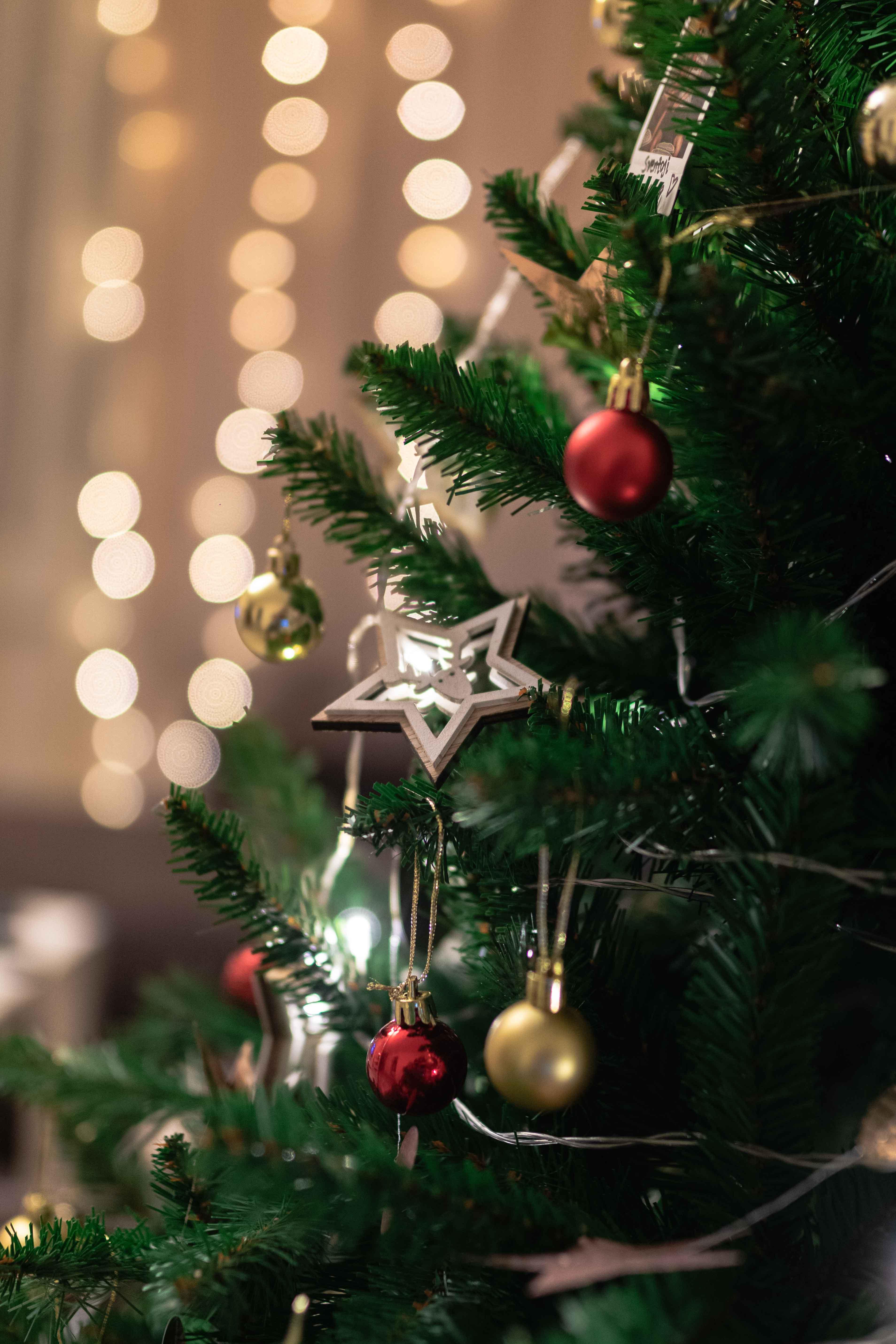 selective focus photo of christmas tree
