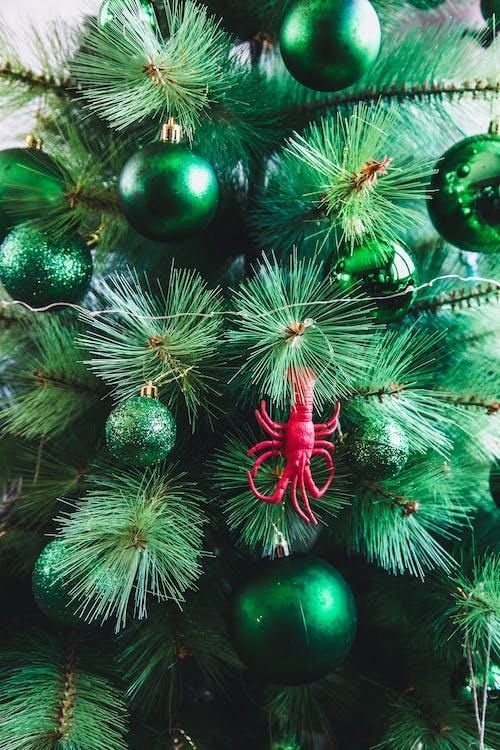 Gratis stockfoto met dennenboom, groen, kerst decors, kerstballen
