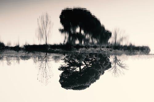 Free stock photo of black and white, lake, landscape, nature